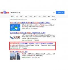 seo優化案例:貴州做網站公司